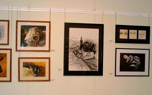 White Cliffs Art Festival - 4 (2010)