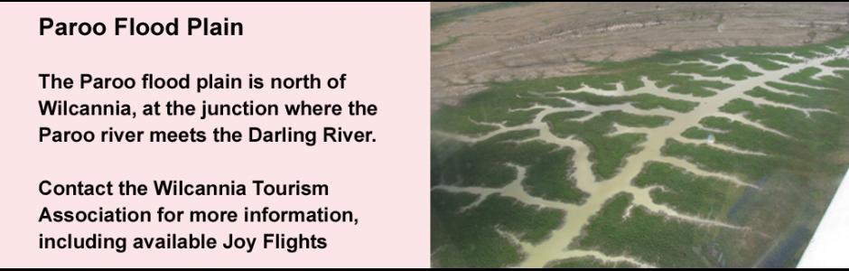 Paroo flood plain, January 2011